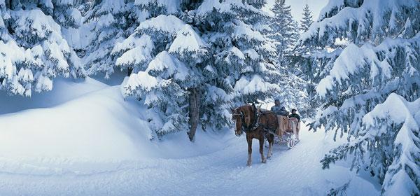 horse-drawn-sleigh-c-valais-tourism_x2g-600280