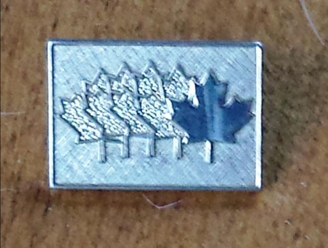 Lotto Canada Pin
