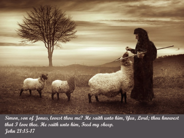Graphic-Peter-Feed-My-Sheep