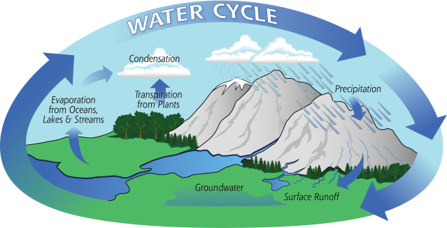 Water-Cycle-Art2A