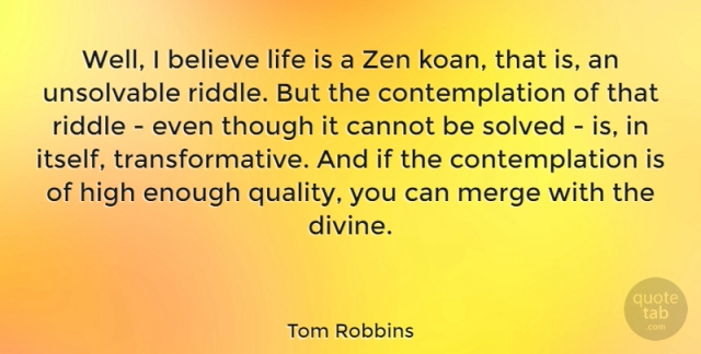 well-i-believe-life-is-a-zen-koan-that-is-an-unsolvable-riddle-but-the-contem-a87405e325ce529922963aee7d43c7a7
